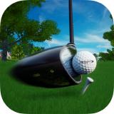 퍼펙트 스윙 골프