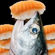 鮭魚吃壽司
